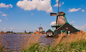 Most Dutch expats plan to eventually return to the Netherlands