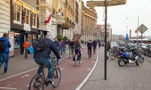 Amsterdam cyclists are (surprisingly) well behaved