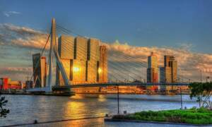 Relocating to Rotterdam: the best neighbourhoods for expats to live in