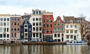 ICAP: The Housing Survey 2017