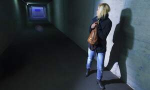 One in five people in the Netherlands a victim of crime