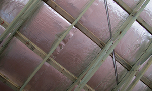 Hague insulation subsidy proves extremely popular