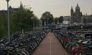 Dutch cities at risk of bike bedlam
