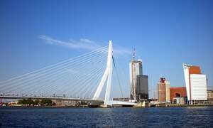 """Rotterdam: First """"healthy city"""" in the Netherlands"""