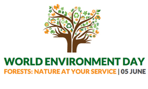 World Environment Day 2011