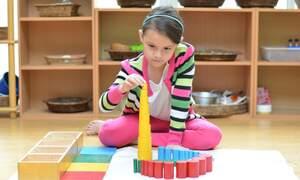 Dutch primary education: Montessori & The Dalton Plan