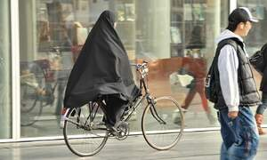 Integration stagnating in the Netherlands