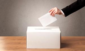 Court denies Dutch expats extra voting time despite ballot delay