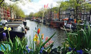 10 things I love about life in the Netherlands