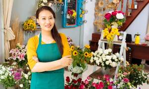 Starting a business as sole proprietor in the Netherlands