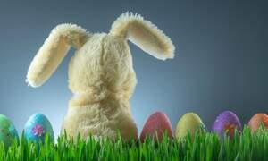 Celebrating Easter in the Netherlands: Brunch, Markets, Fires and Festivals!