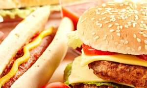 Dutch study links obesity to education level