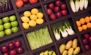 Sustainable foods growing in popularity in the Netherlands