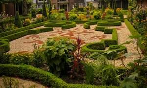 Open Garden Days