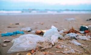 The Netherlands to ban many single-use plastics by next summer