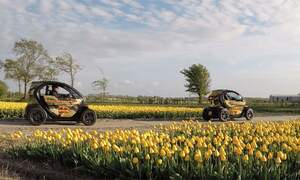 Renzy: Discover the tulip fields up close and in a unique way!