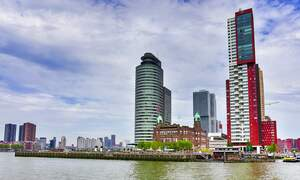Now is the time to bring your business to the Netherlands