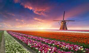 [Video] Top 10 must-sees in the Netherlands