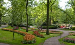 Coronavirus closes Keukenhof's doors for the second year in a row