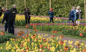 Tourism in the Netherlands increases