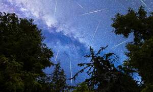 Don't miss seeing the Delta Aquariid meteor shower this year
