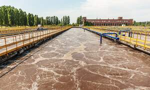 RIVM: Coronavirus detected in sewage water