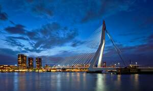 Why you should start your business in the Netherlands