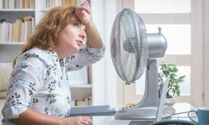 Second heatwave set to hit the Netherlands
