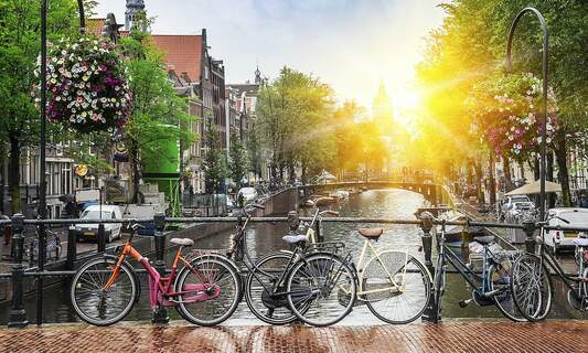 NGOs in Amsterdam: Helping to make the world a better place