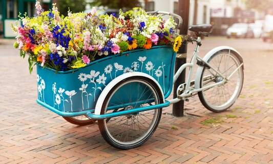 5 special kinds of bicycle