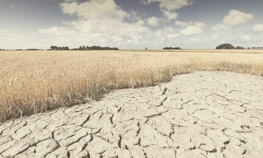 UN Climate report: Climate change could cause food shortage from 2050
