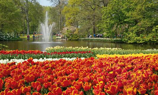 8 amazing attractions in the Netherlands if you love flowers and gardens