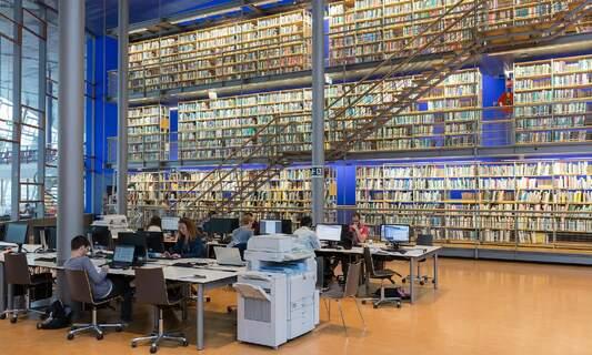 Dutch universities see increase in number of international students