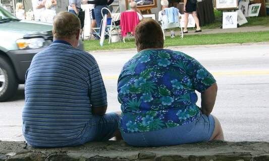 Obesity and related illnesses a serious problem in the Netherlands