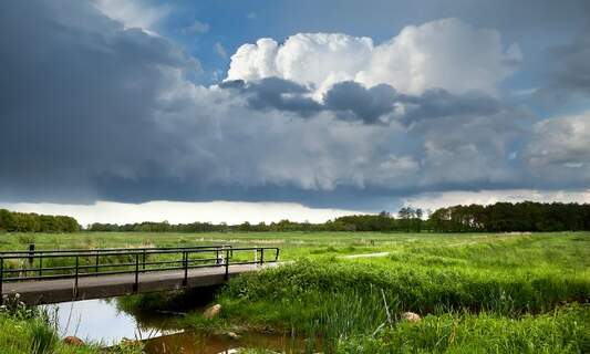 Dutch weather predicted to get even wetter