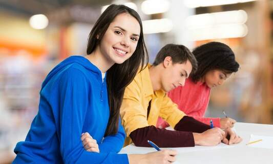 Language teachers criticise naturalisation exam in the Netherlands