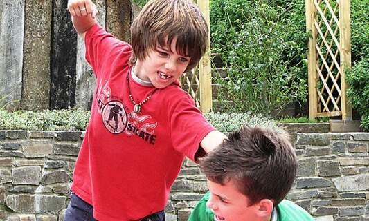 Finnish anti-bullying programme in Dutch schools hugely successful