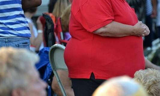 Dutch survey finds link between education and weight