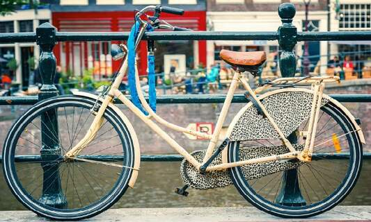 The Netherlands is Europe's leading bicycle manufacturer