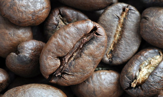 Nearly half the coffee consumed in the Netherlands sustainably produced