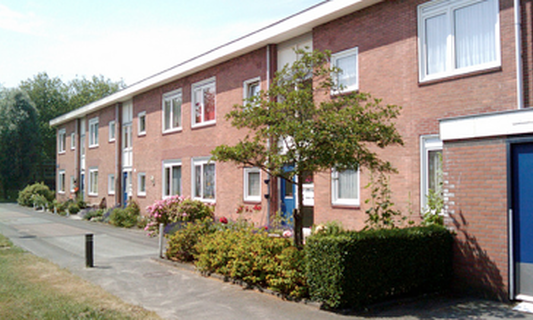One quarter of social housing tenants violate new income limit