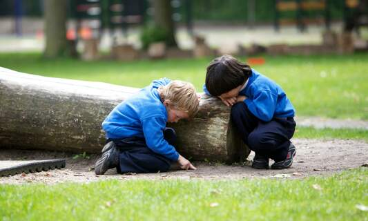 Leaves, logs and life skills