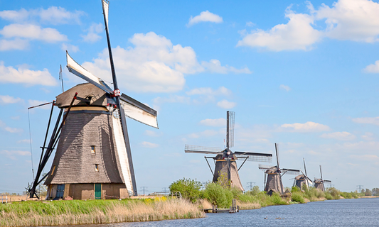 7 words that defined the Netherlands