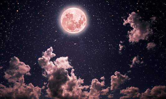 Pink Moon in the Netherlands: Catch a glimpse!