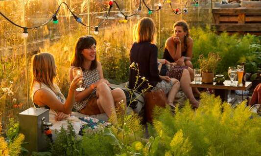 ROEF: A rooftop celebration in Amsterdam