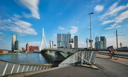 Landing your dream job in Rotterdam: a guide for Expats