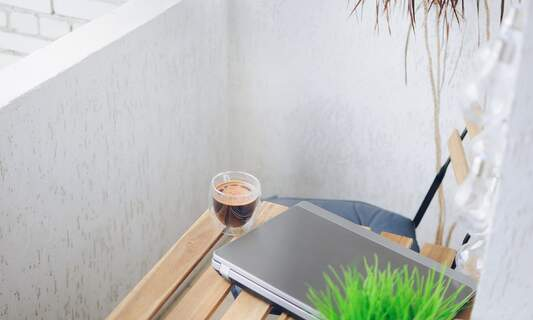 The Netherlands is one of the world's best countries for remote working in 2021