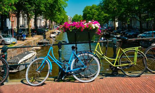 Brexit: How to secure your right of residence and work in the Netherlands in 2021