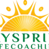 Dayspring Life Coaching