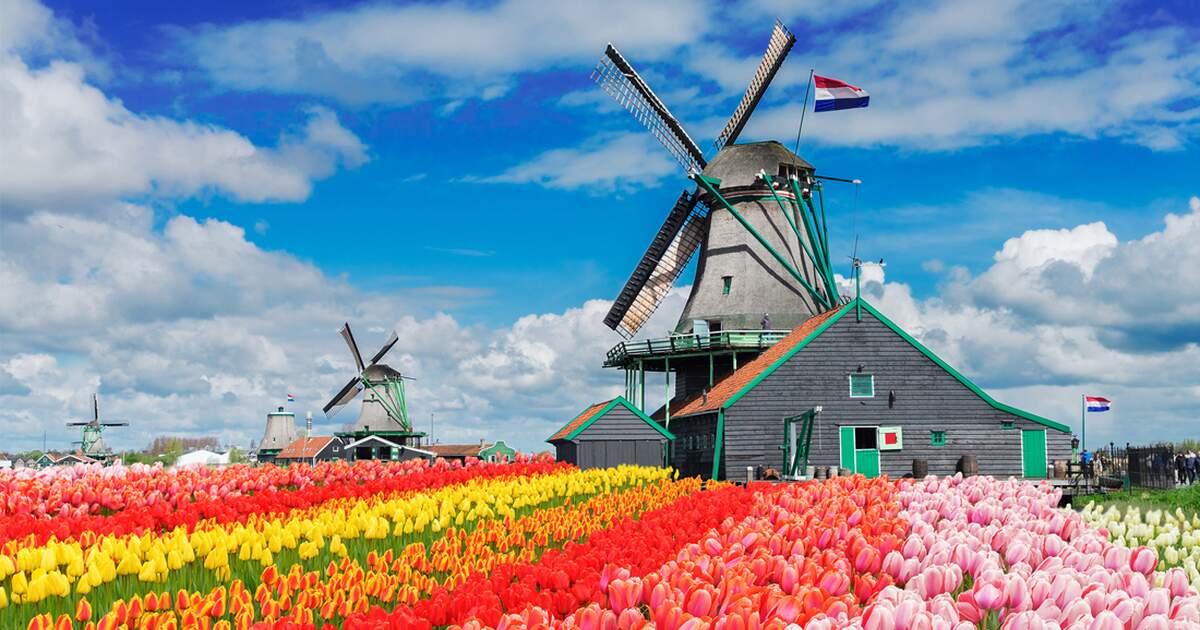 Www Holland